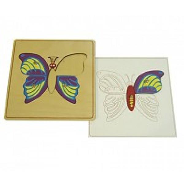 Строение бабочки с контуром. 5.03.3