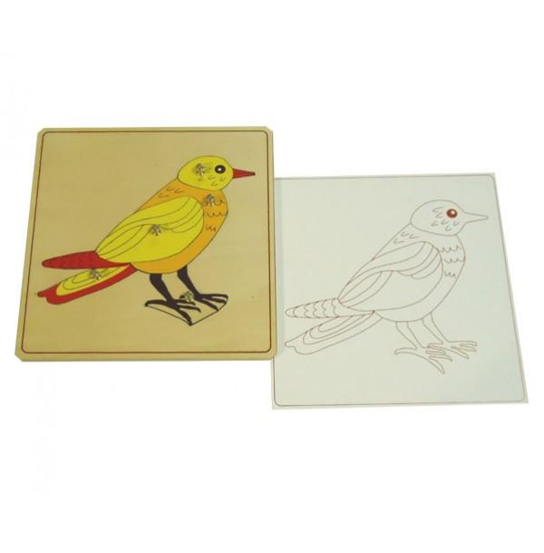 Строение птицы с контуром. 5.03.8