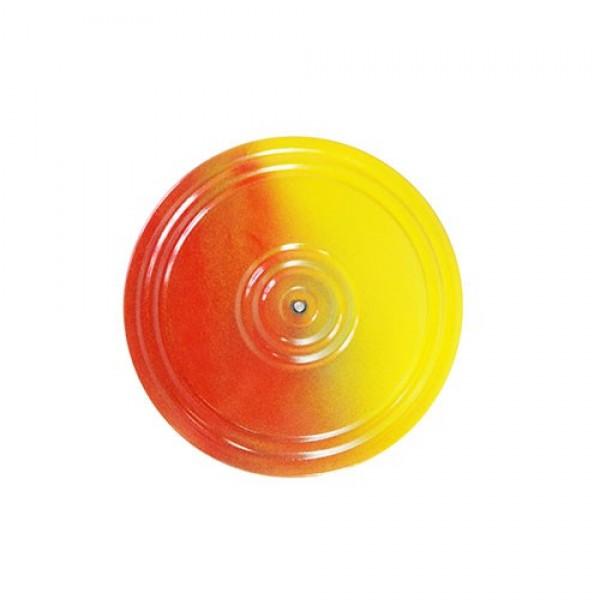 """Диск """"Здоровье"""" многоцветный. 237"""