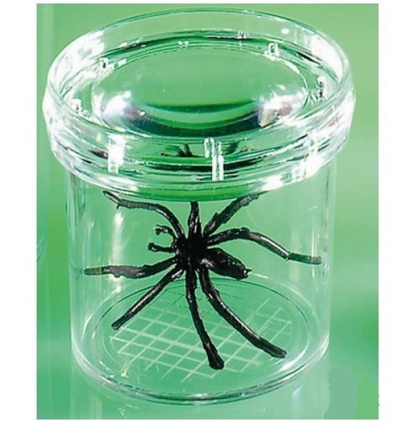 Баночка для изучения насекомых GeoSafari®. EI-5111